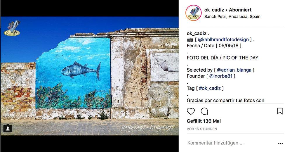 Instagram_ok_cadiz_fotodeldia_screenshot_2018-05-06.jpg