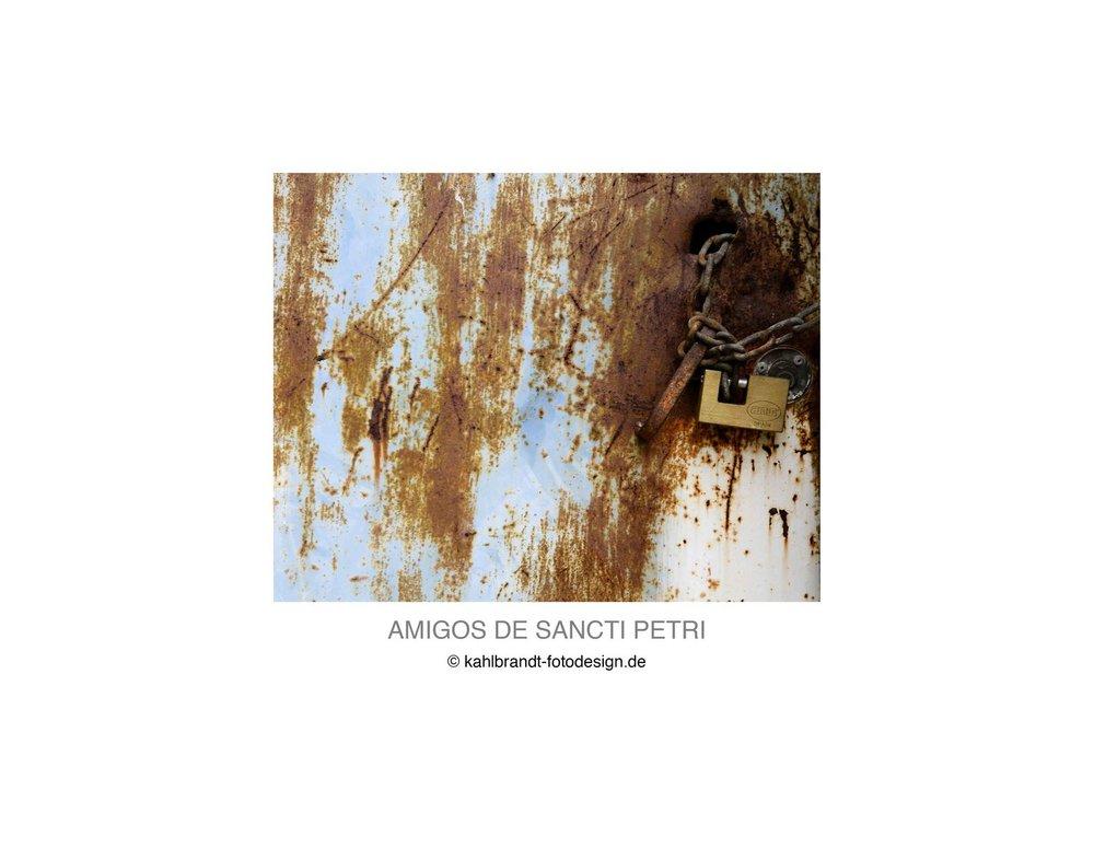 AMIGOS-DE-SANCTI-PETRI-LIBRO-201531.jpg