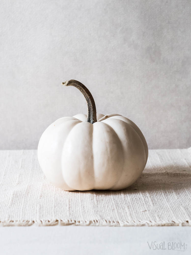 white-pumpkin-Monica-Duran.jpg
