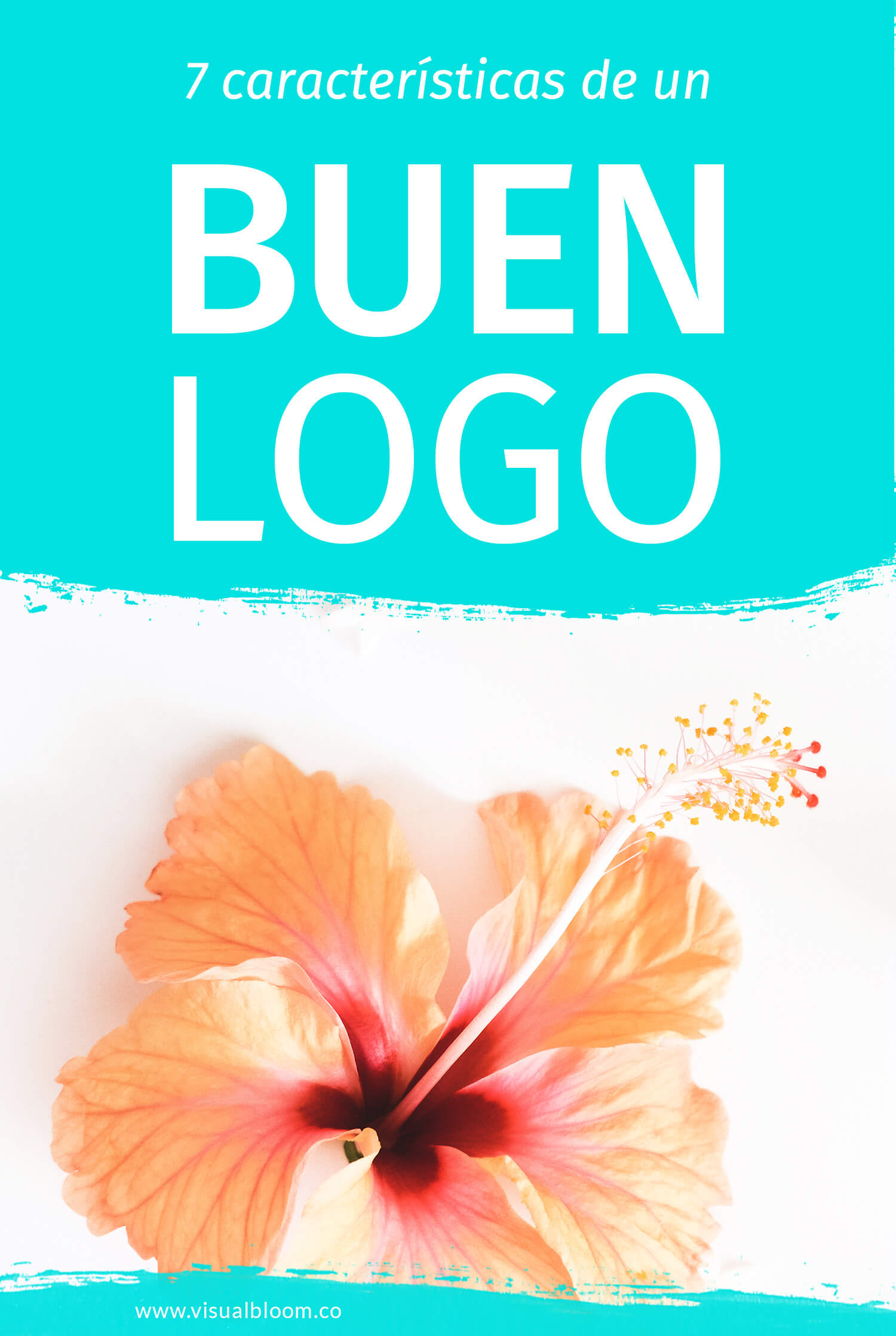 7 características de un buen logo - Visual Bloom