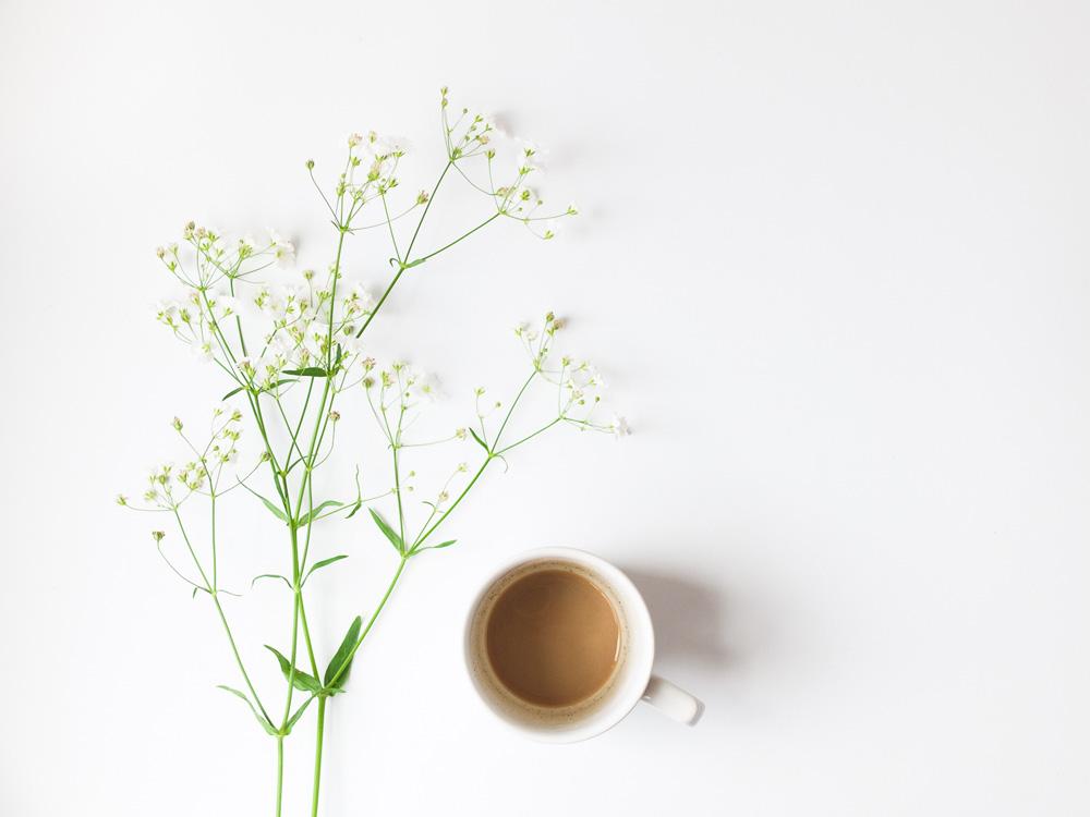flores-y-taza-Monica-Duran.jpg