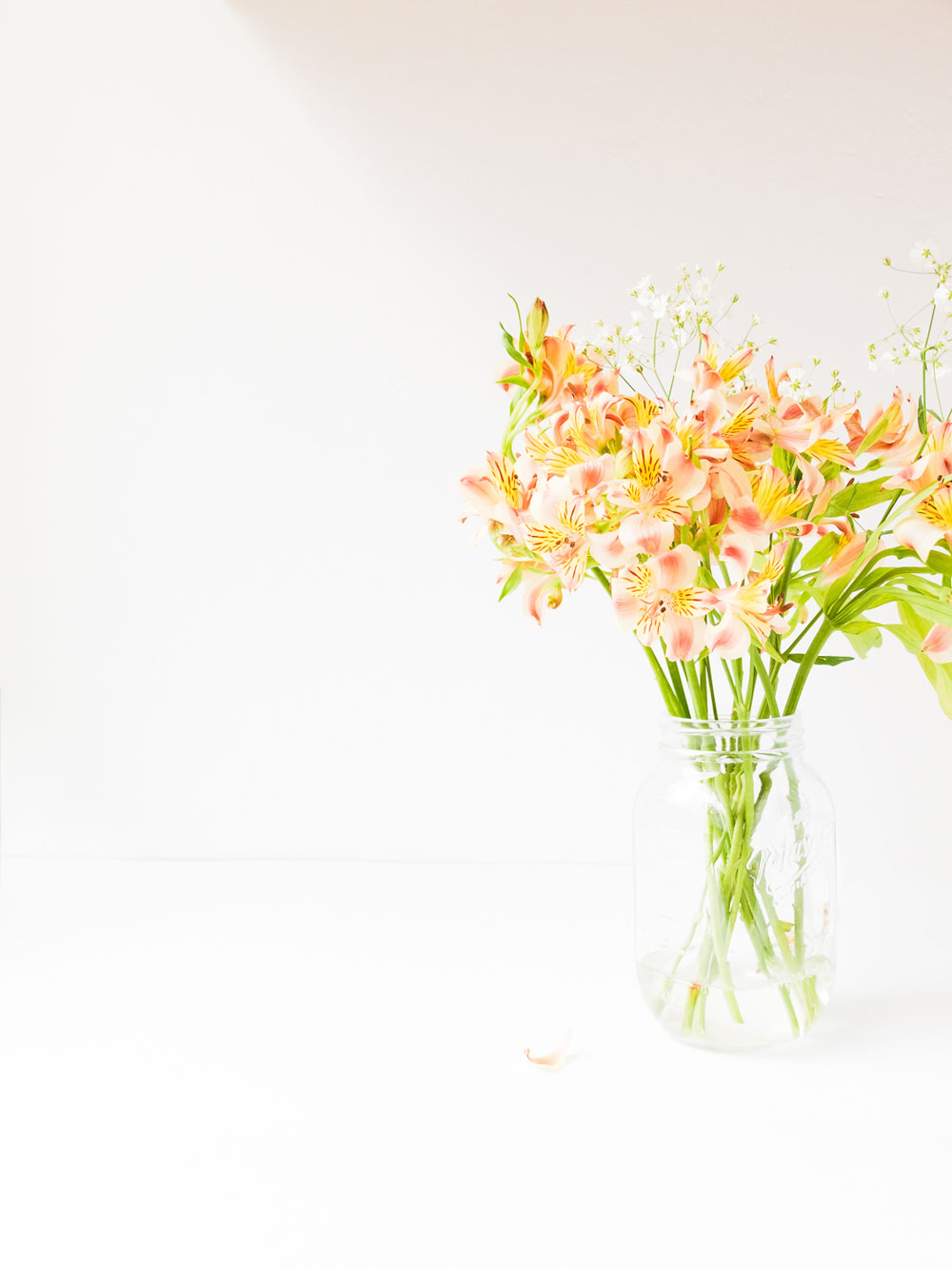 flores-Monica-Duran-23.jpg