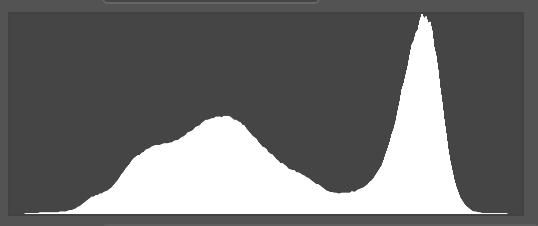 Así se ve el histograma de una foto expuesta correctamente. Fíjate que el área blanca está concentrada en el centro y no se corta ni en el extremo derecho ni en el izquierdo.