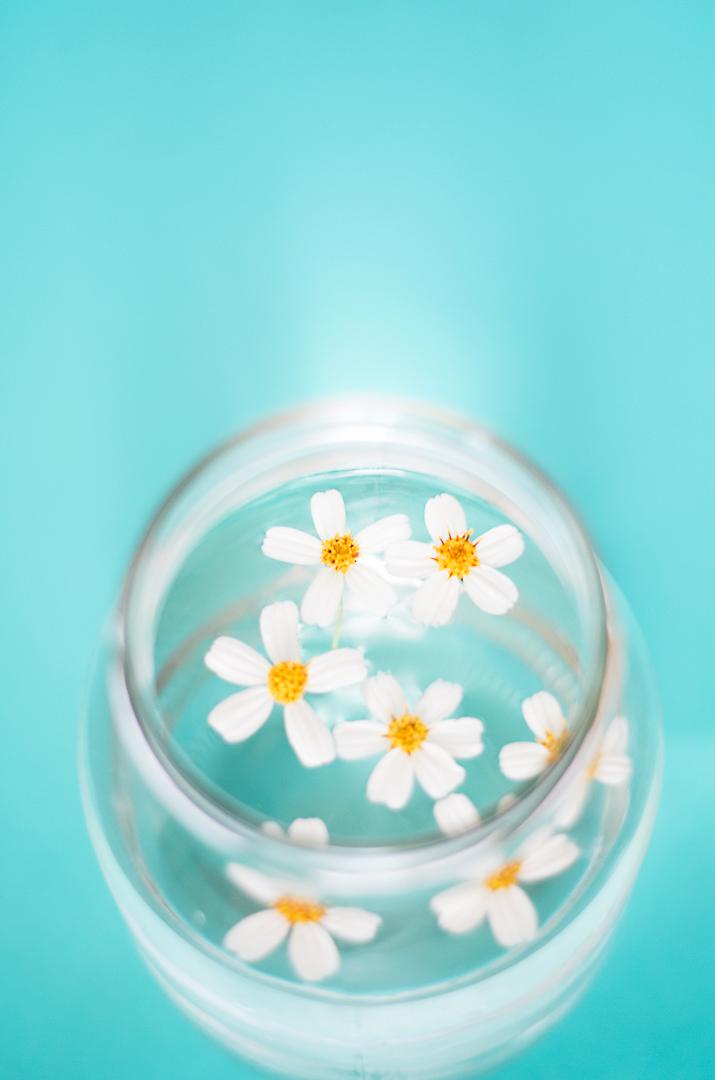 flores-en-agua-Monica-Duran-4.jpg