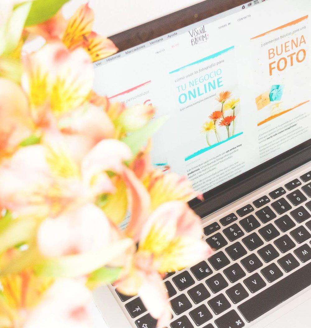 Un servicio de diseño web en Squarespace a la medida de las necesidades de tu negocio.