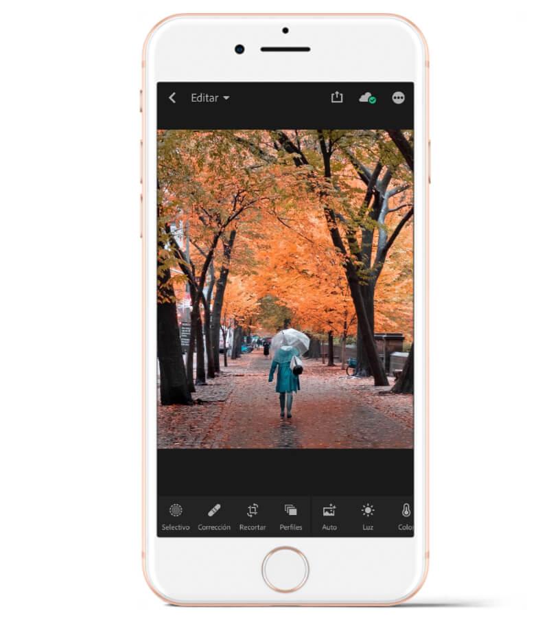 Adobe Lightroom es ideal si quieres administrar tu librería de fotos en tu celular, además de editar las fotos.