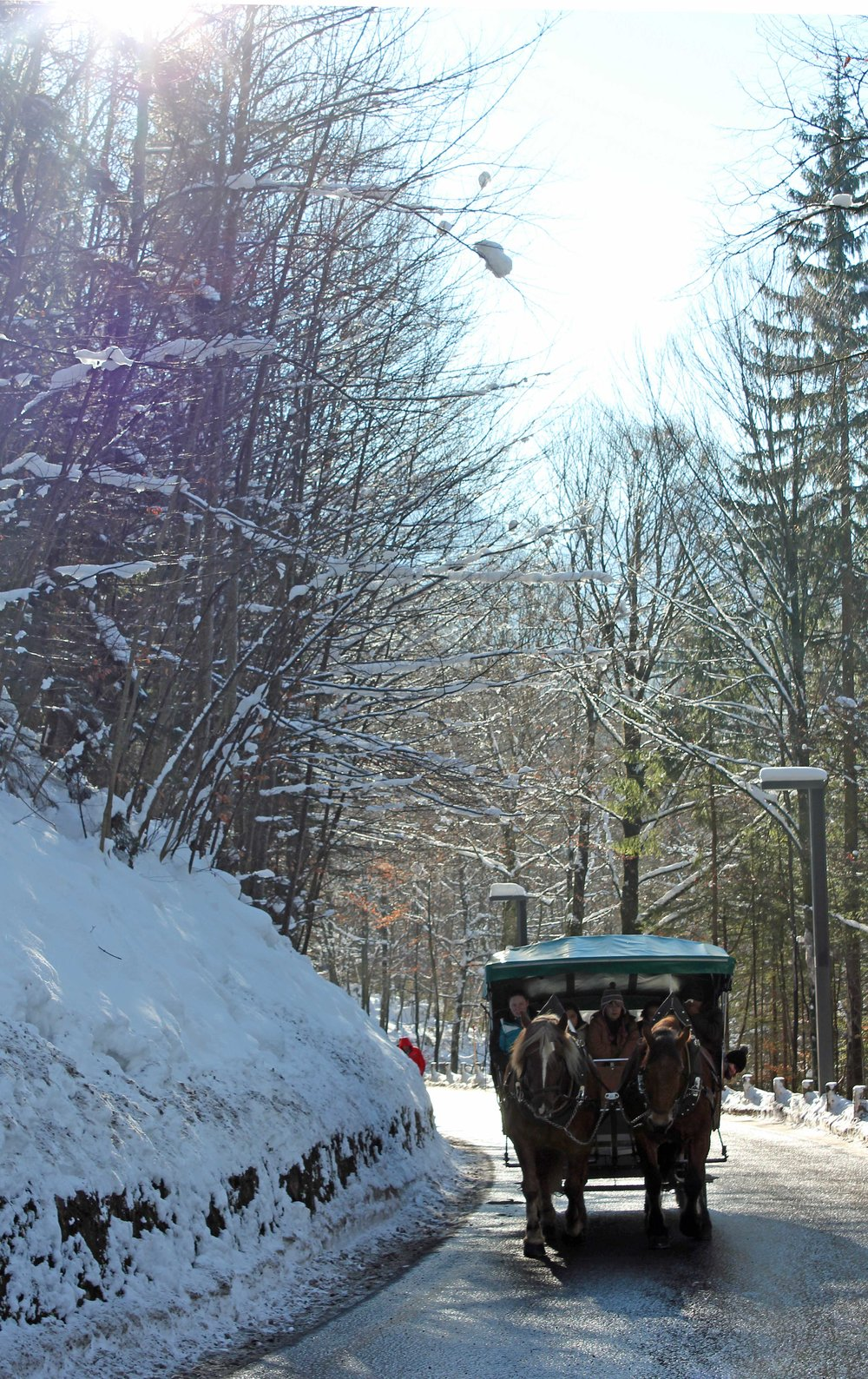 Fussen-Carriage-Ride.jpg