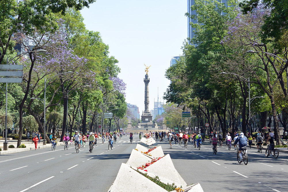 Free Things to do in Mexico City - Paseo de la Reforma