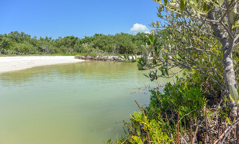 Things to do in Isla Holbox Mexico