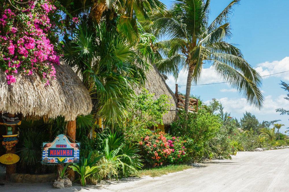 Isla Holbox Mexico Guide