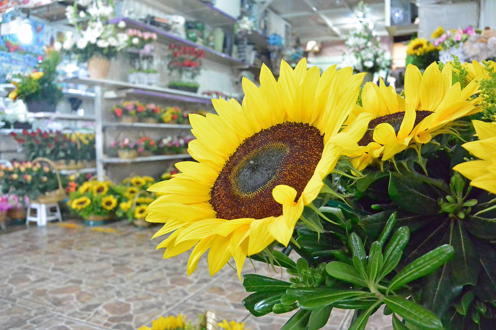 Things to do in Mexico City - Jamaica Flower Market