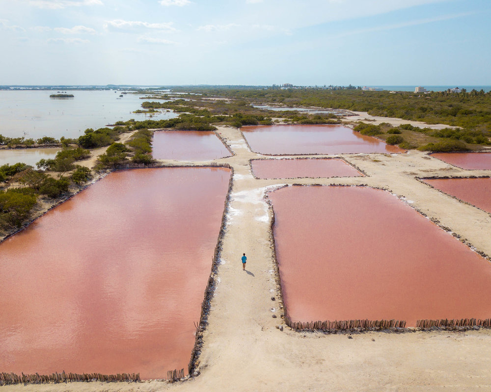 Pink salt flats near Progreso, Mexico