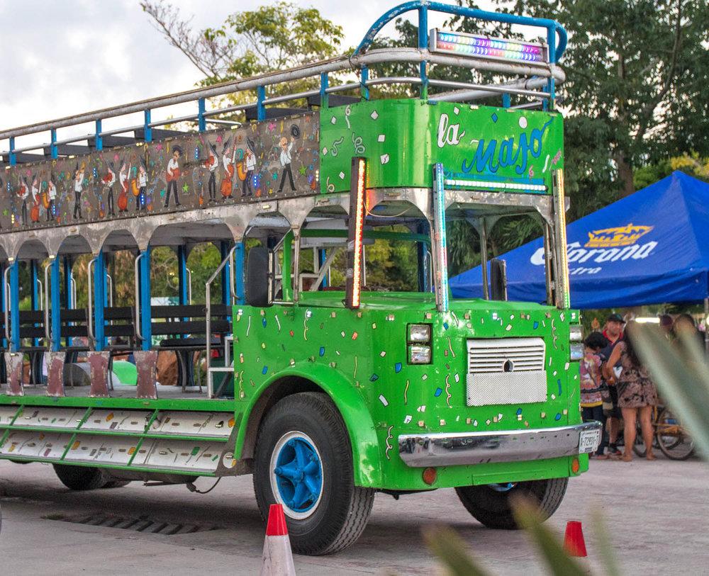 Bule Buzz in Chetumal Mexico