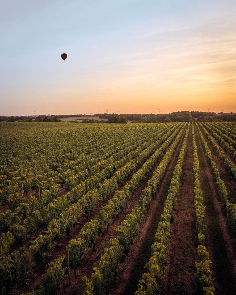 Loire Valley - Hot Air Balloon Ride