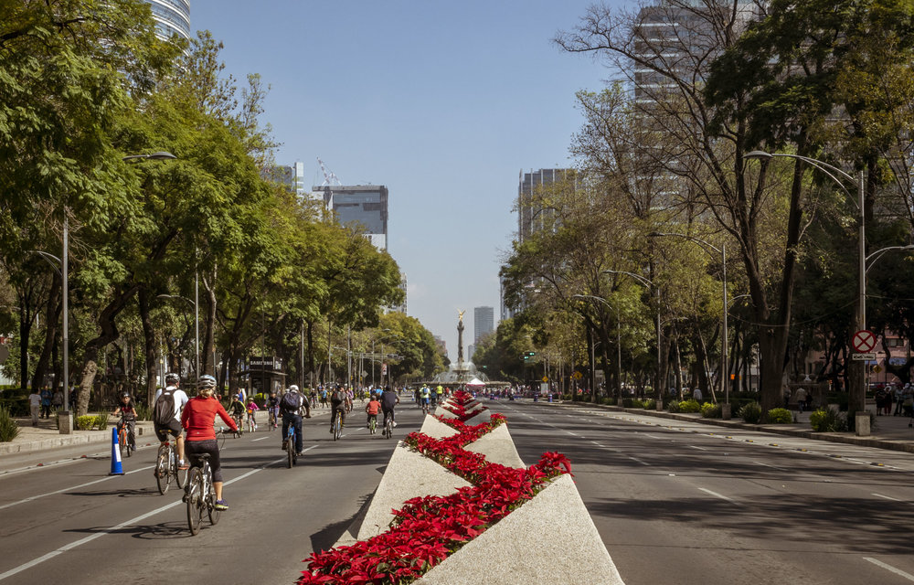 Sunday Morning Bike Rides in Mexico City