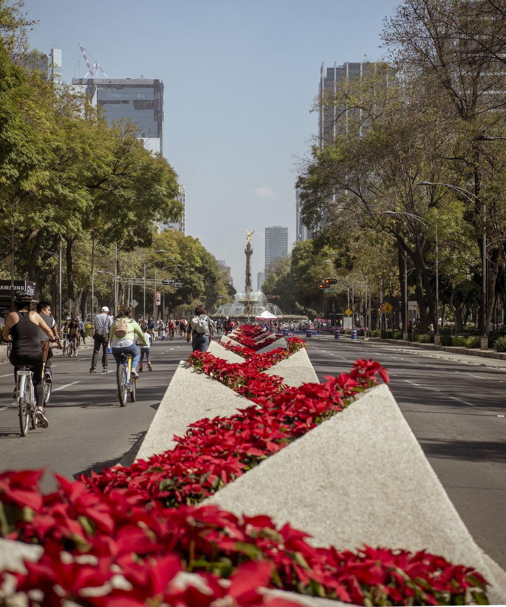 Paseo de la Reforma - Sunday Morning Bike Rides in Mexico City
