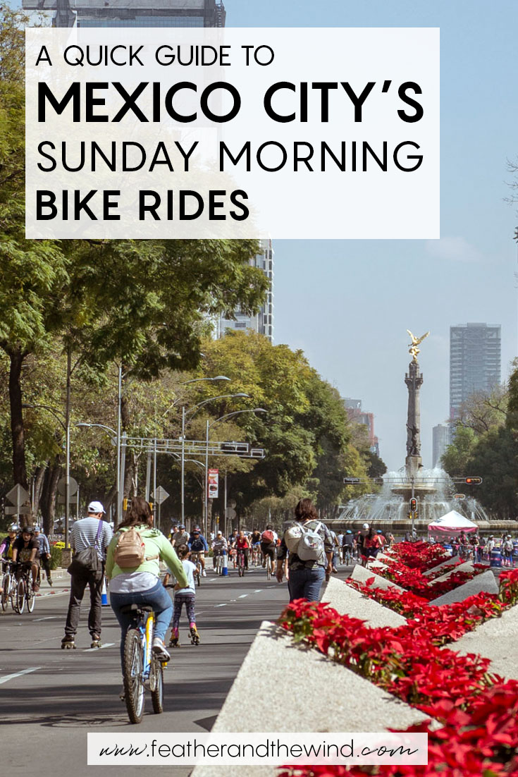 Sunday mornings in Mexico City belong to the cyclists! Here's a quick guide on how to make the most of your bike ride along Paseo de la Reforma and where to get a free bike rental in Mexico City.