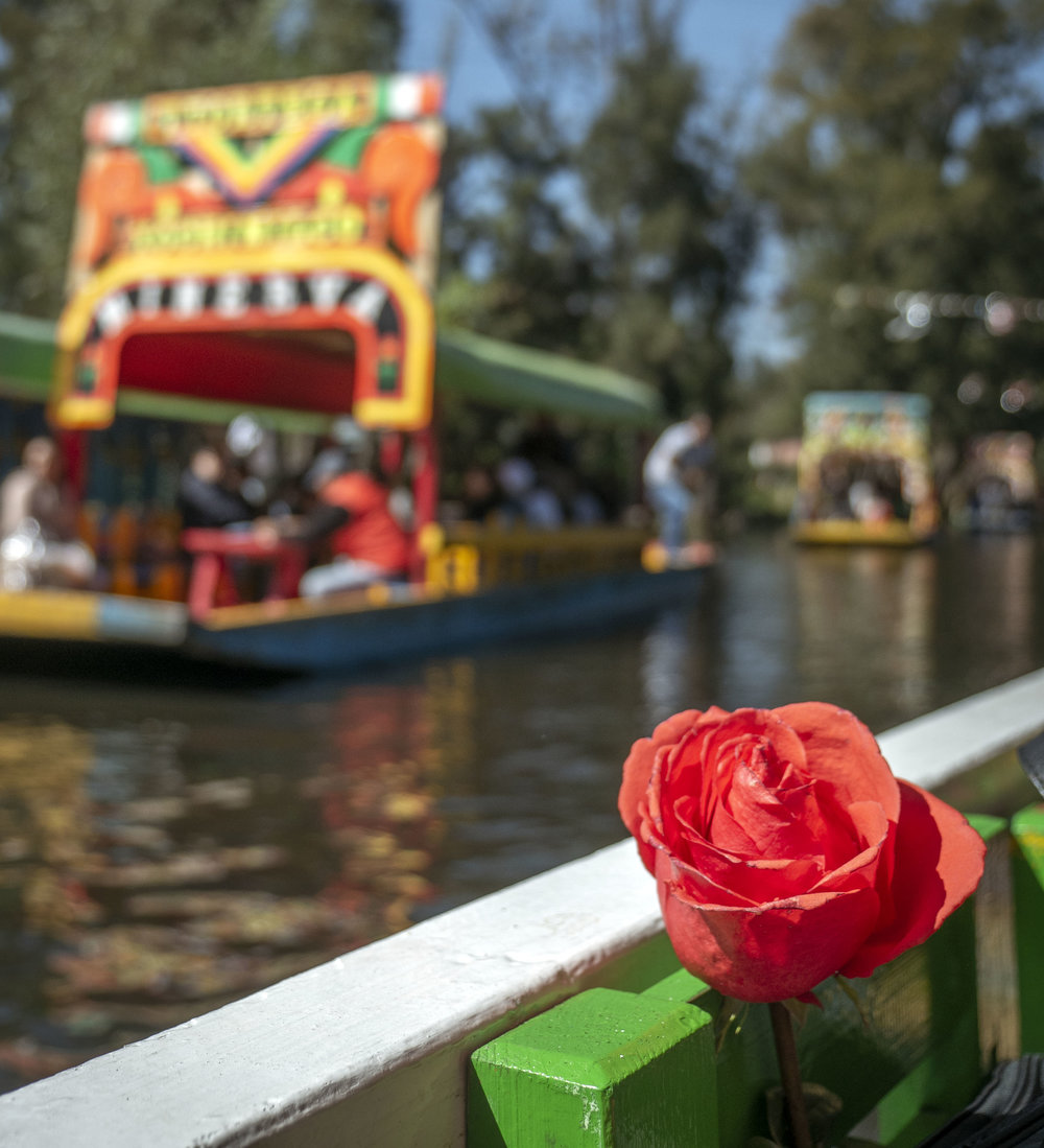 Xochimilco Mexico City Day Trip Guide