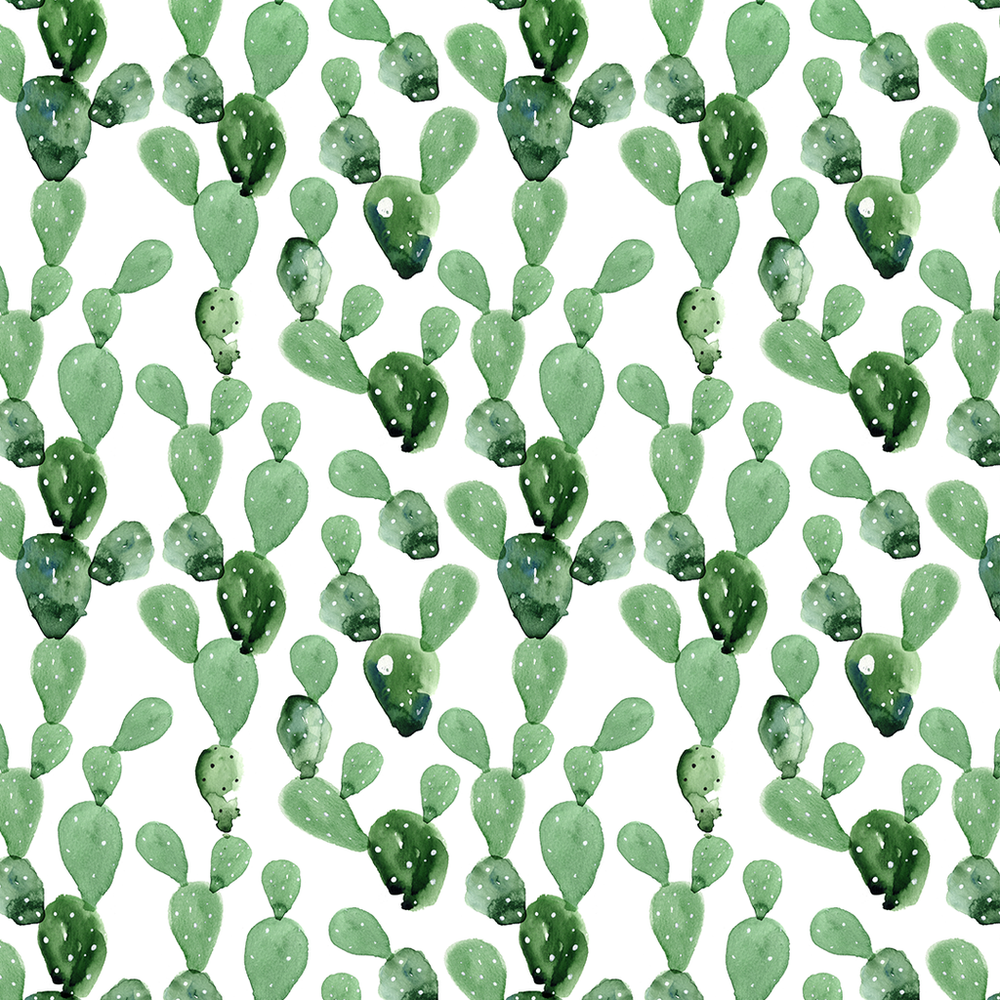 watercolor cactus wallpaper
