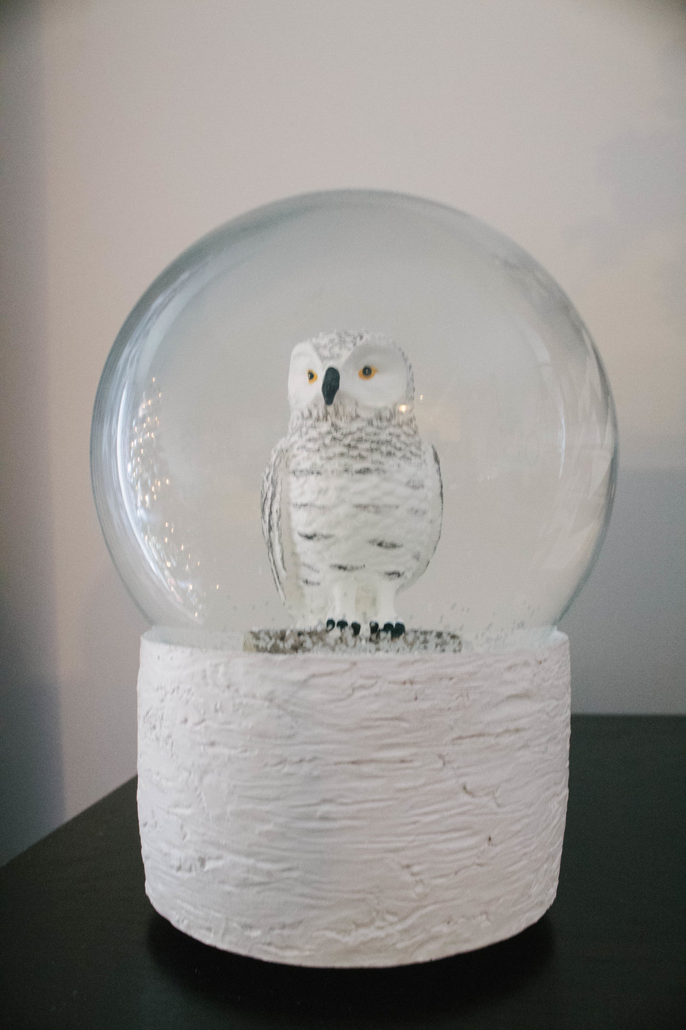 Harry Potter owl snow globe