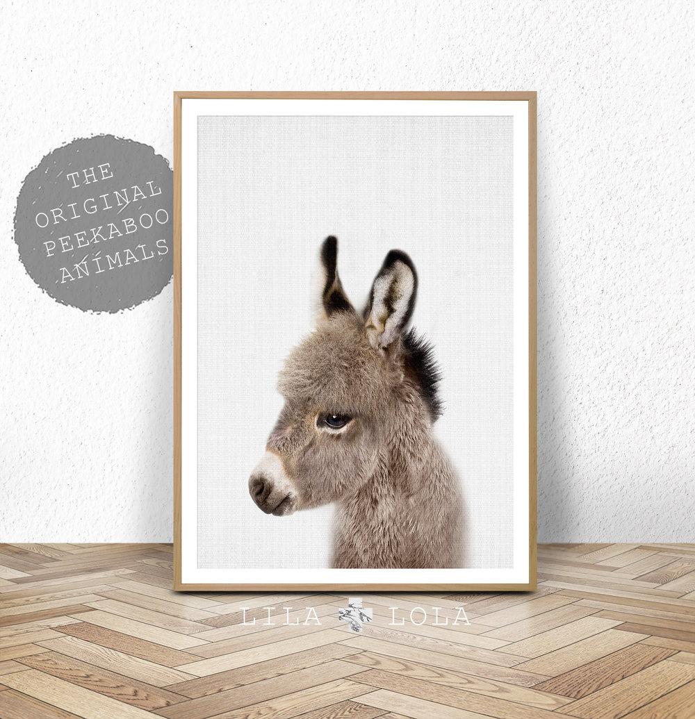 baby donkey nursery art