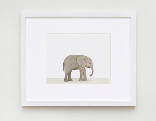 baby-elephant-the-animal-print-shop-2.jpg
