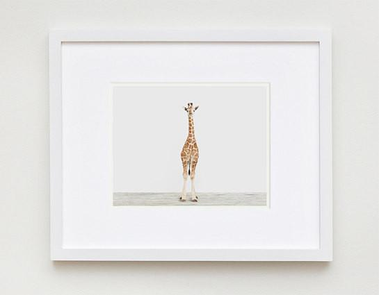 baby-giraffe-3-the-animal-print-shop-1.jpg