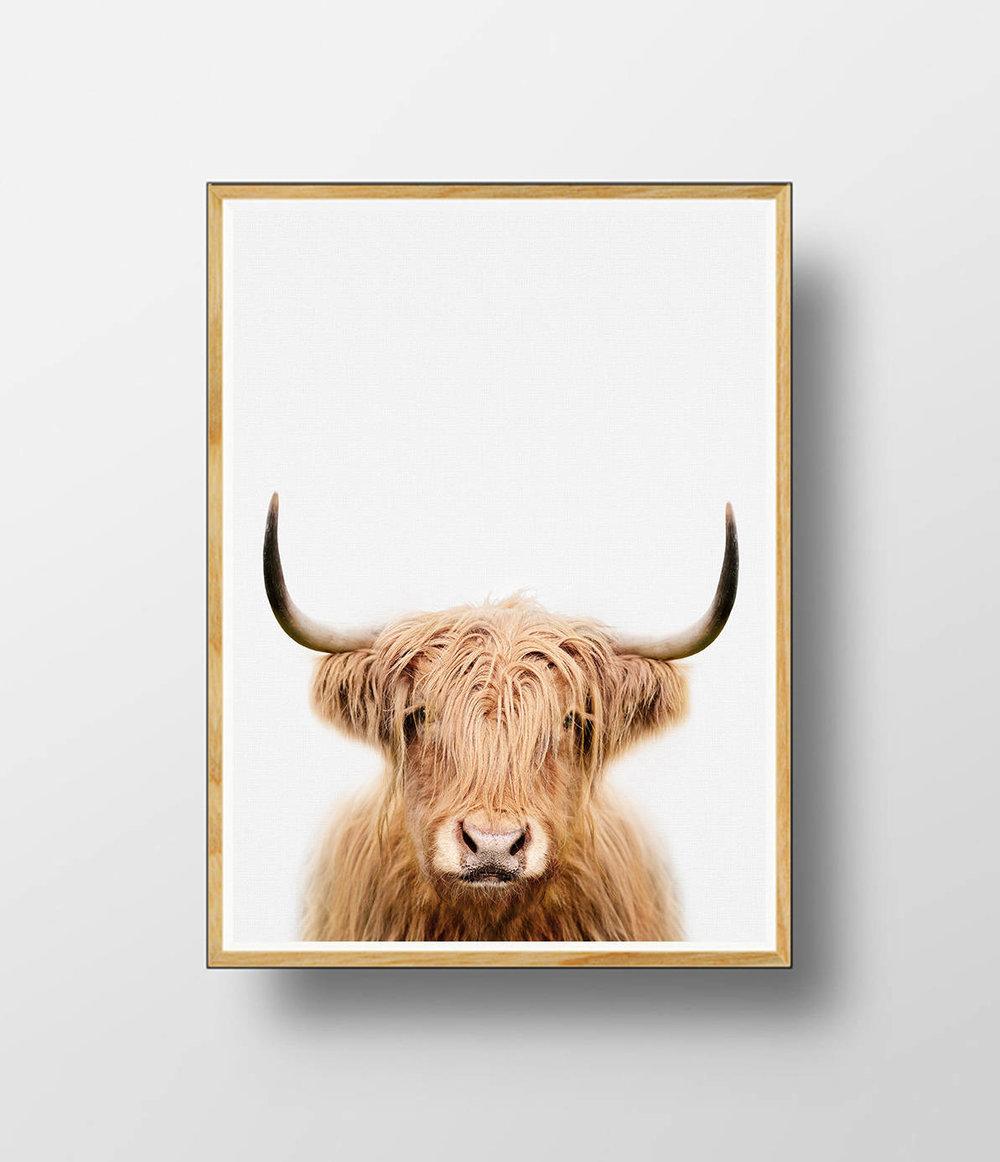 highland cow nursery print