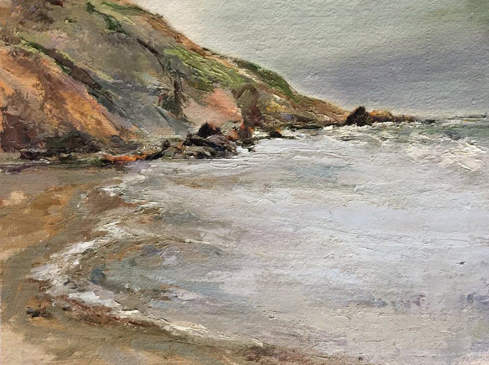 Muir Beach, 2016