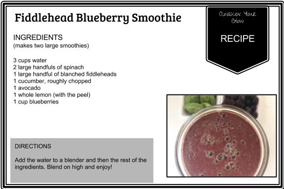 fiddlehead blueberry smoothie