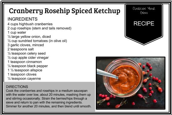 Cranberry Rosehip Spiced Ketchup .jpg