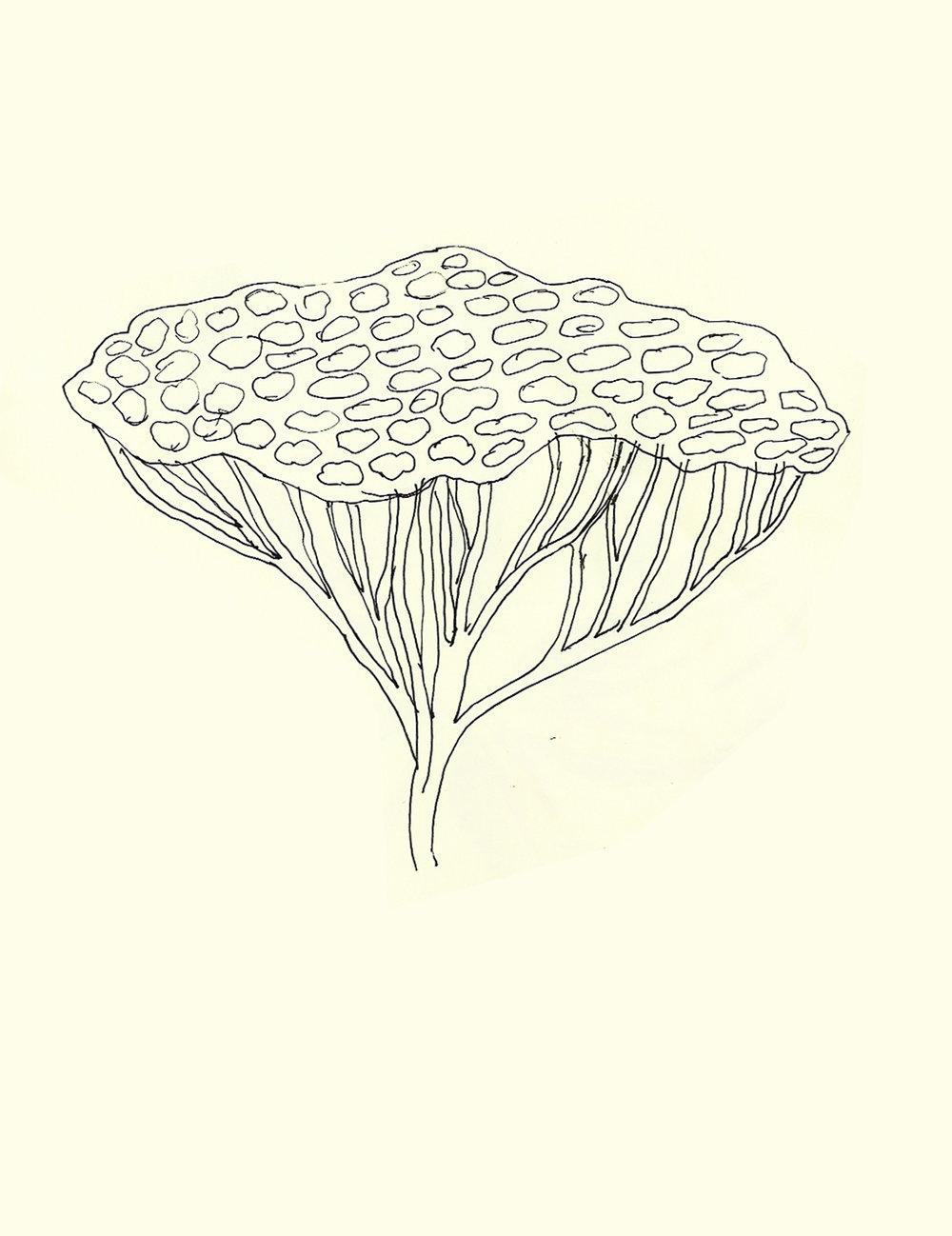 sketch-70.jpg
