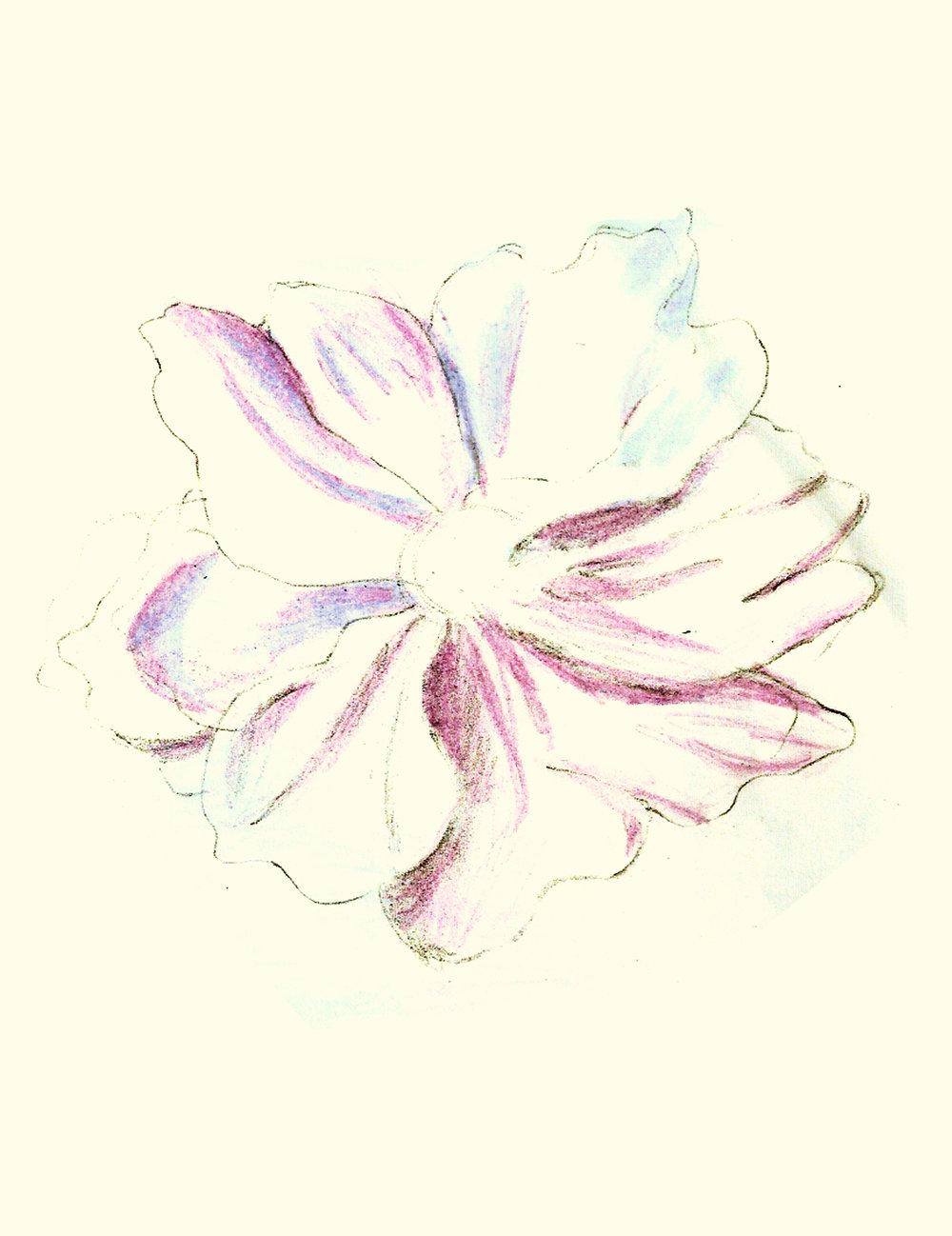 sketch-72.jpg