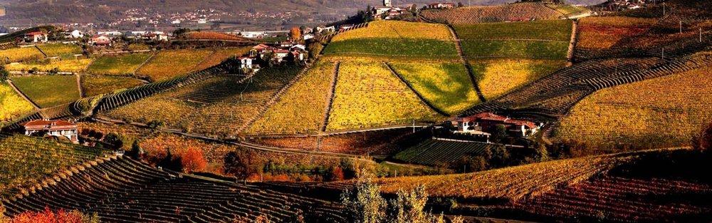 barbaresco-barolo-vineyards-nebbiolo-wine-food-slow1-1980x620.jpg