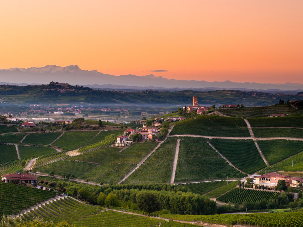 SFD_Wine_Region_Piedmont_CR_iStock_2520x1890.jpg