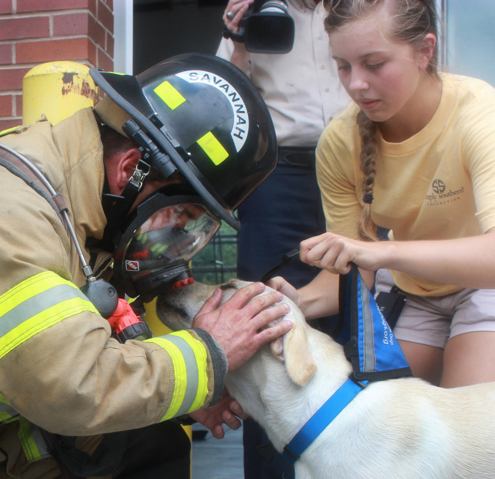 Mullins the yellow Lab, a service dog in training, nuzzles up to a Savannah firefighter in July 2015 while trying to get used to loud noises and first responders for emergency situations.  (Dash Coleman/Savannah Morning News)