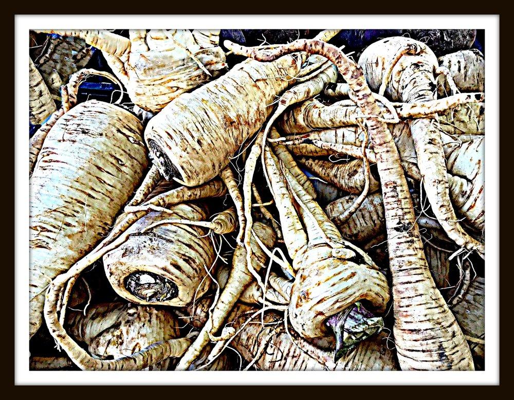 parsnipsPHOTOframed.jpg