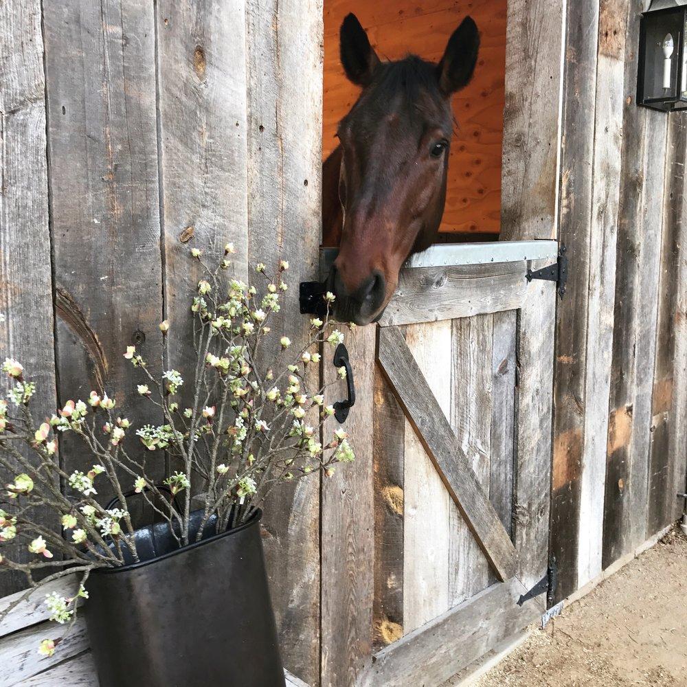 Reclaimed-Wood-Barn