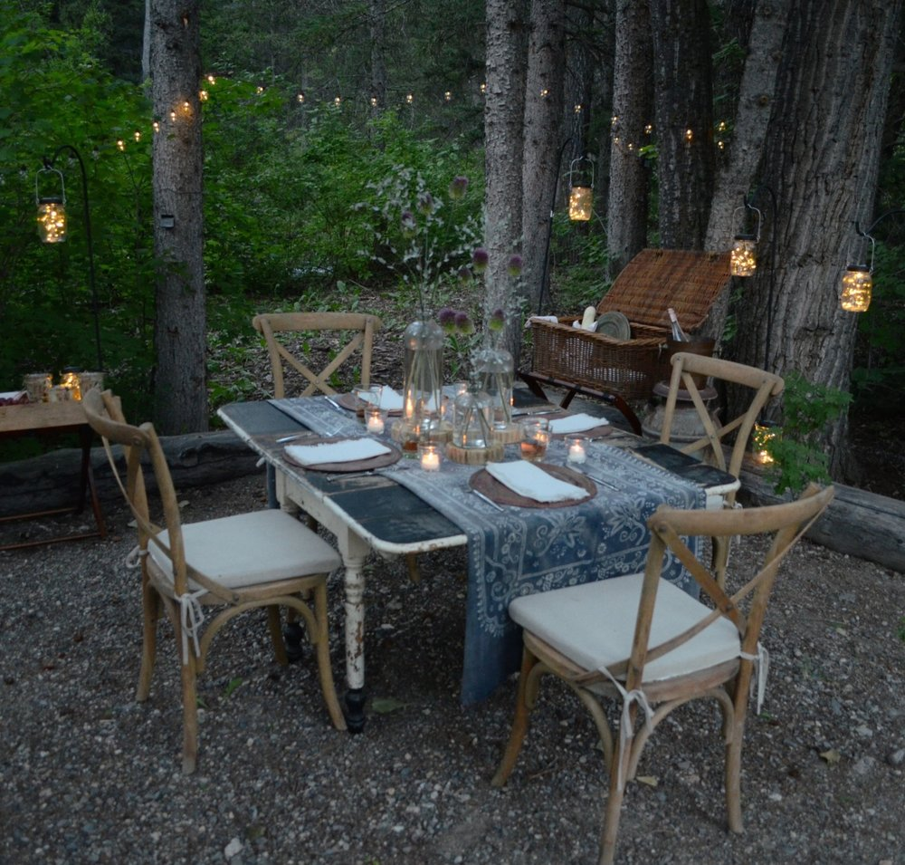 I used these solar lights for a little picnic in the woods at our ranch.  You can see more details by clicking  [HERE] .