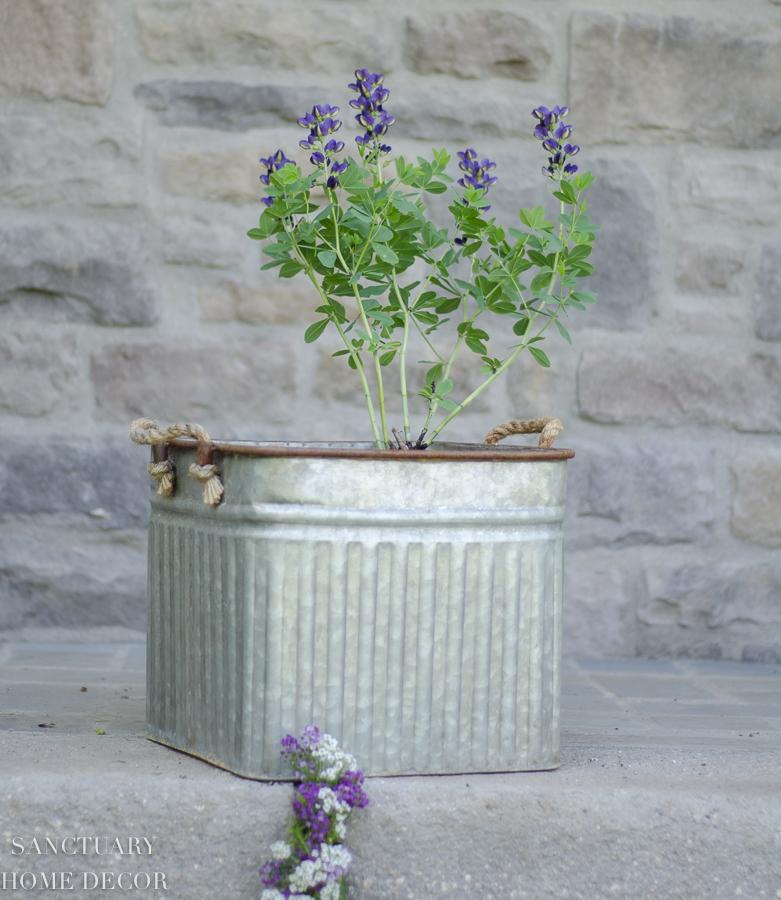 container-garden-design-6.jpg
