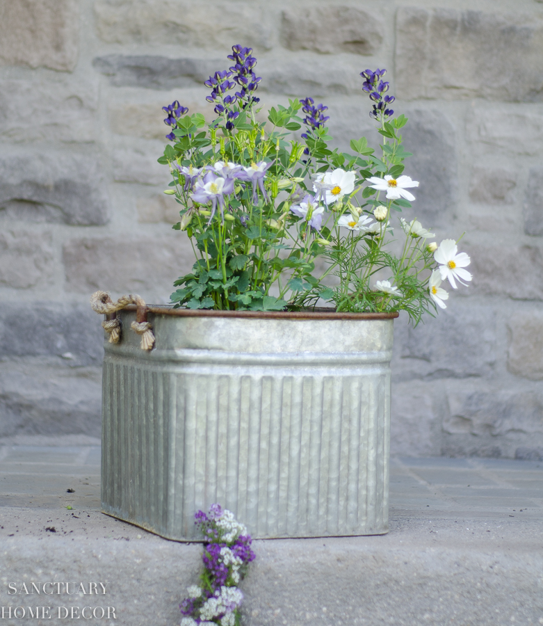 container-garden-design-8.jpg