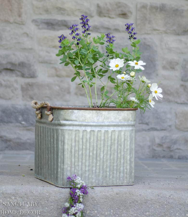 container-garden-design-7.jpg