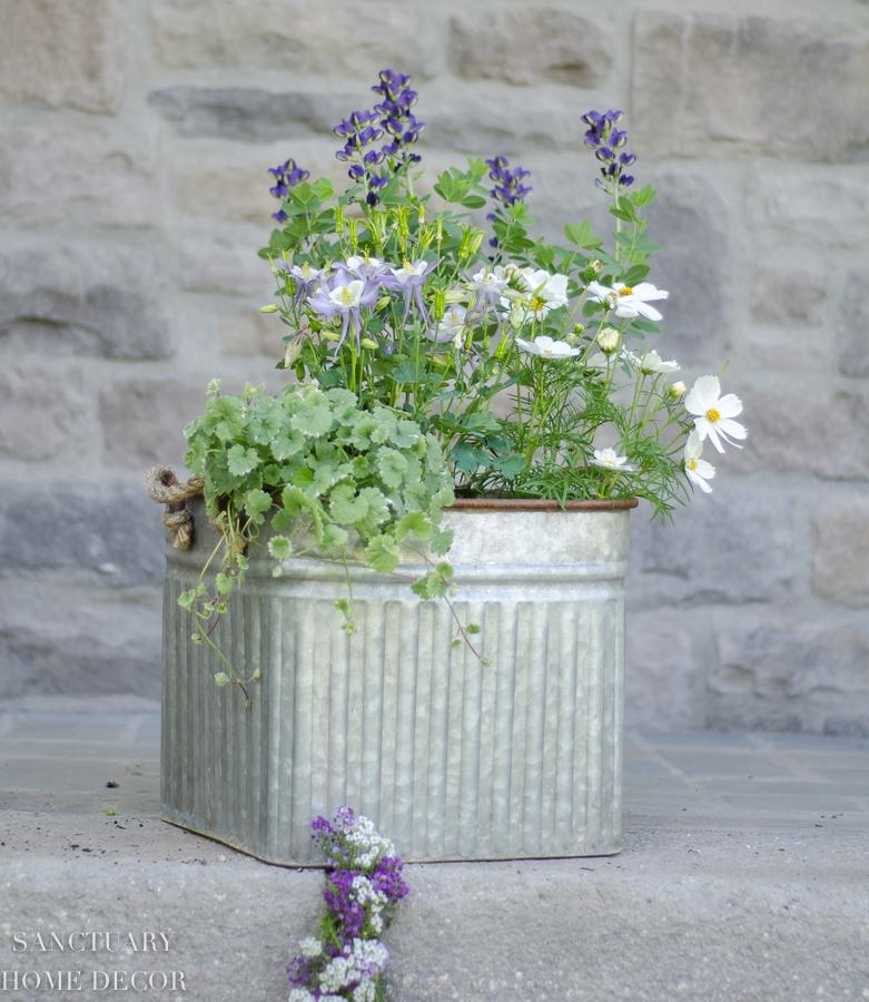 container-garden-design-9.jpg