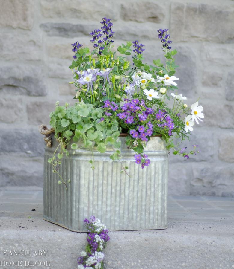 container-garden-design-10.jpg