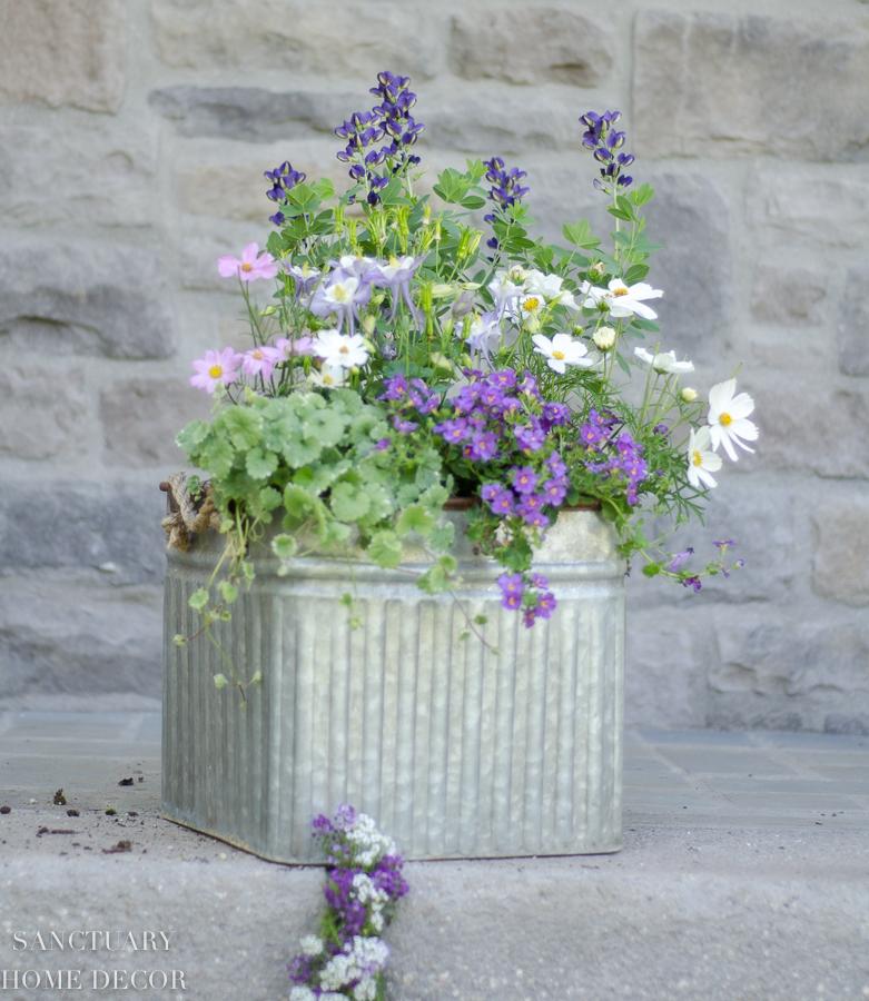 container-garden-design-11.jpg