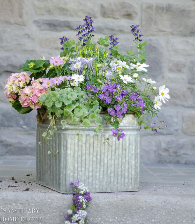 container-garden-design-12.jpg