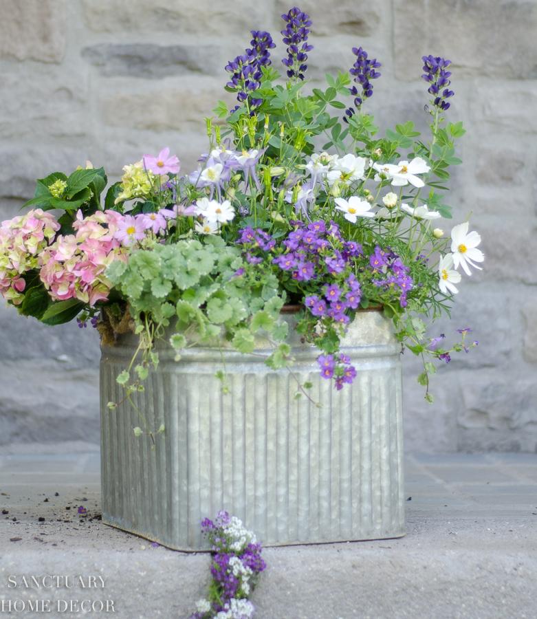 container-garden-design-13.jpg