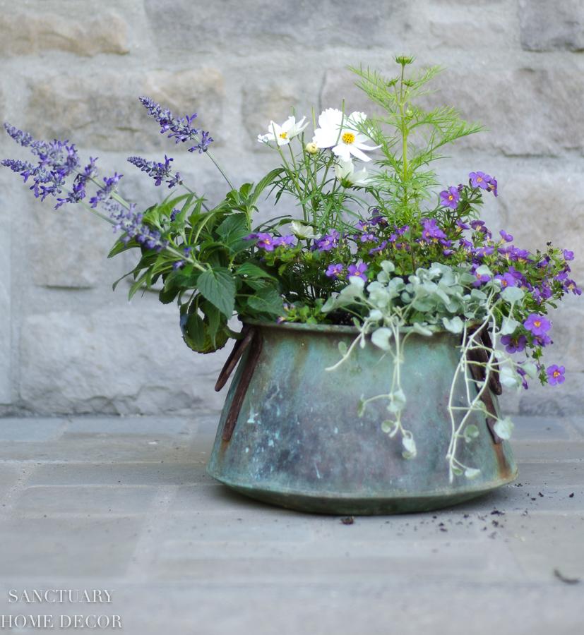 container-garden-design-19.jpg