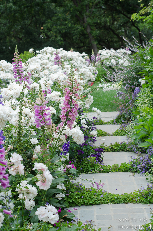 How to Plant an English Garden
