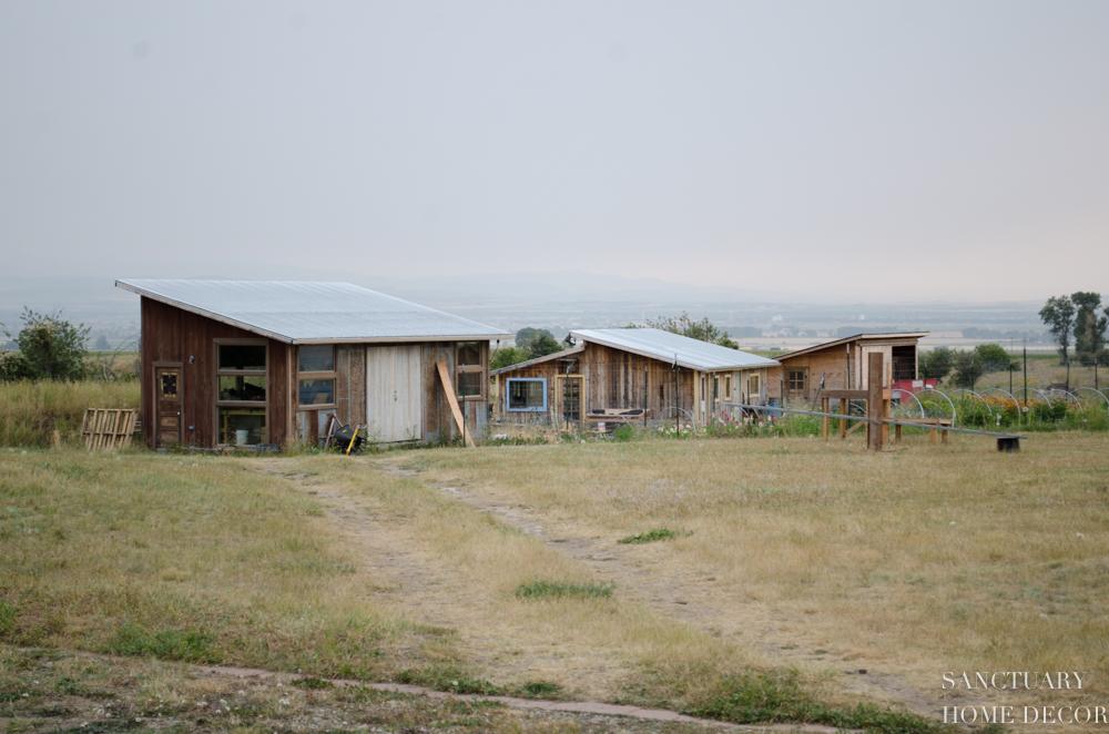 Montana Flower Farm-11.jpg